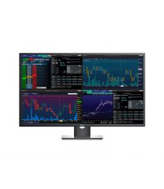 "Dell P4317Q 43"" Ultra HD 4k Multi Client Monitor"